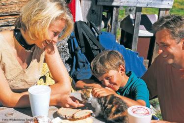 Familien-Wochenendurlaub in der Wildschönau
