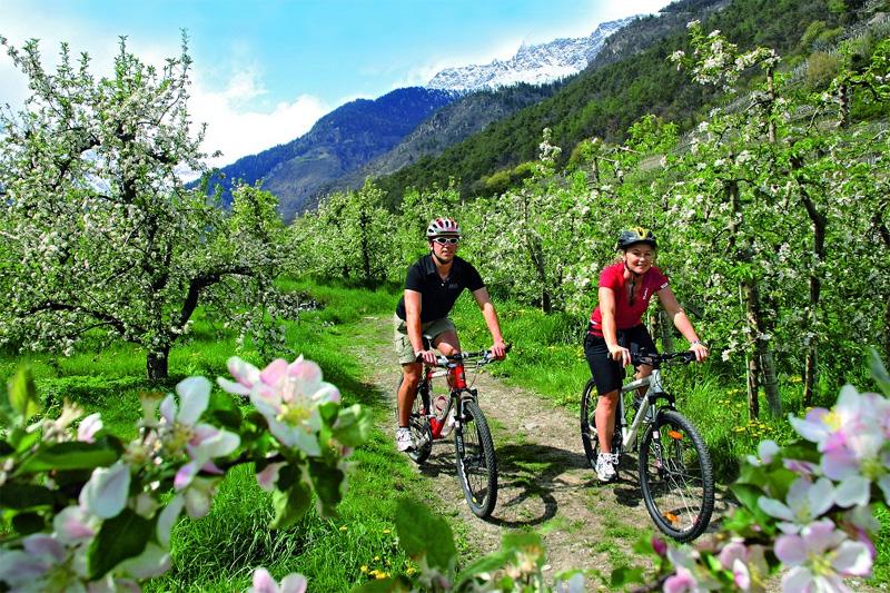 Bikeurlaub in Südtirol