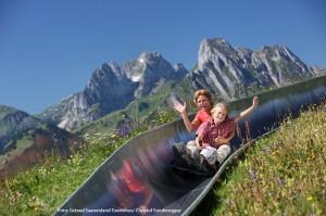 Sommerrodeln in den Alpen
