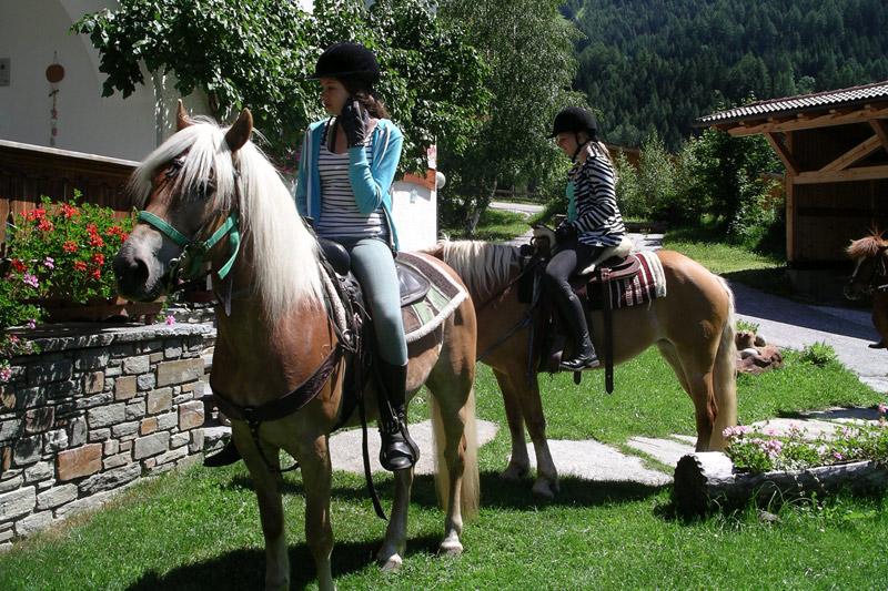 Reiten und geführte Ausritte ins alpine Gelände