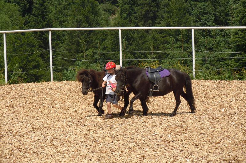 Ponyreiten im Kinderhotel Alphotel