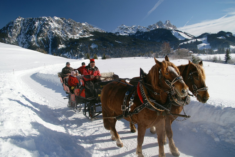 Pferdeschlittenfahrt durch das Tannheimer Tal