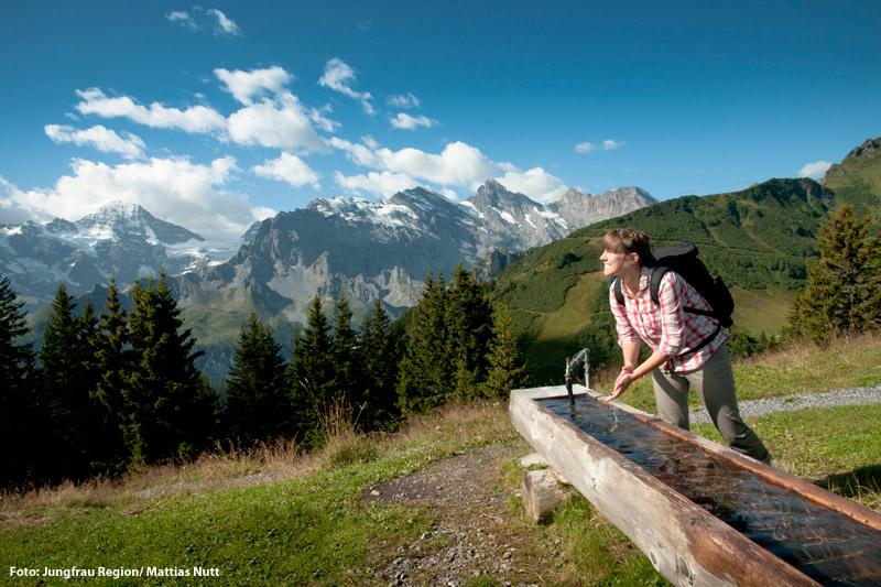 Wandern in der Jungfrauregion