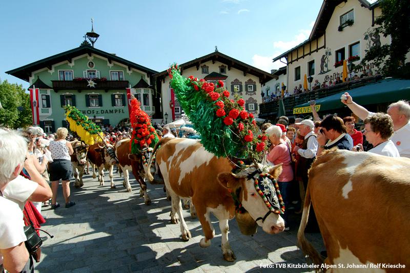 Almabtrieb in St. Johann in Tirol