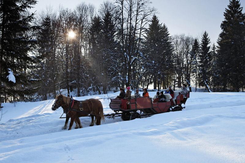 Pferdekutschfahrt in Tirol
