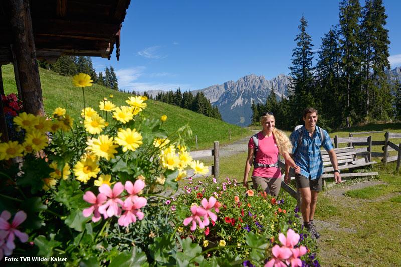 Wanderurlaub am Wilden Kaiser in den Kitzbüheler Alpen