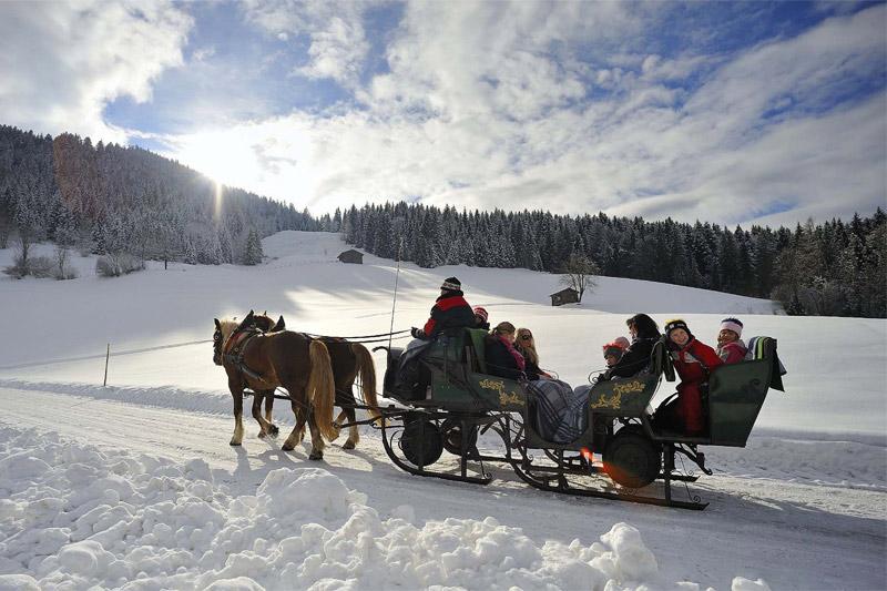 Berghof Pferdeschlittenfahrt