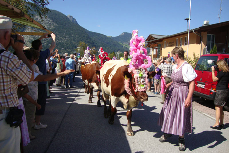 Bauernherbst im Salzburger Land