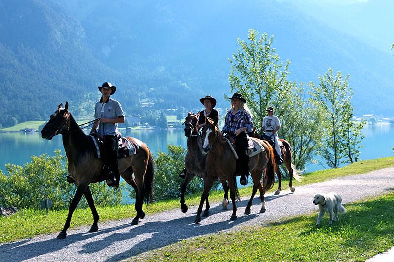Reiterurlaub im Wiesenhof