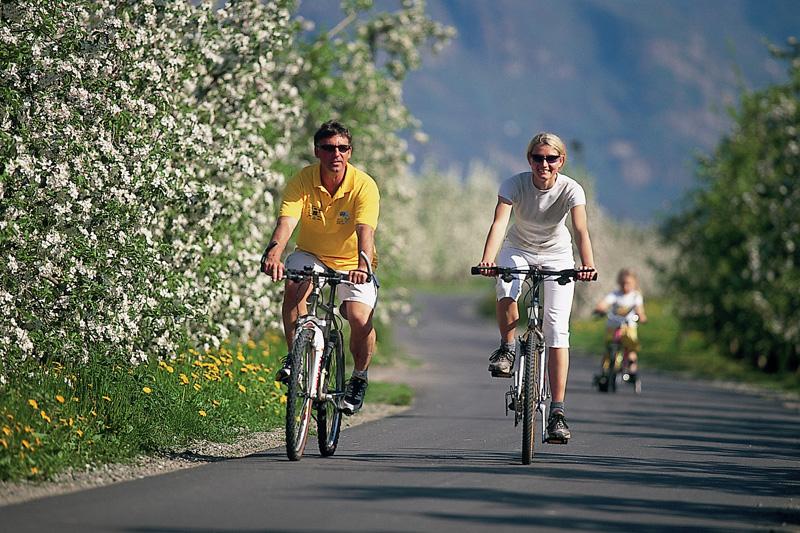 Radeln durch die Obstgärten Südtirols