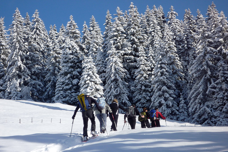 Als Vitalpina Wanderhotel bietet das Naturhotel Rainer kostenlos geführte Schneeschuhwanderungen an