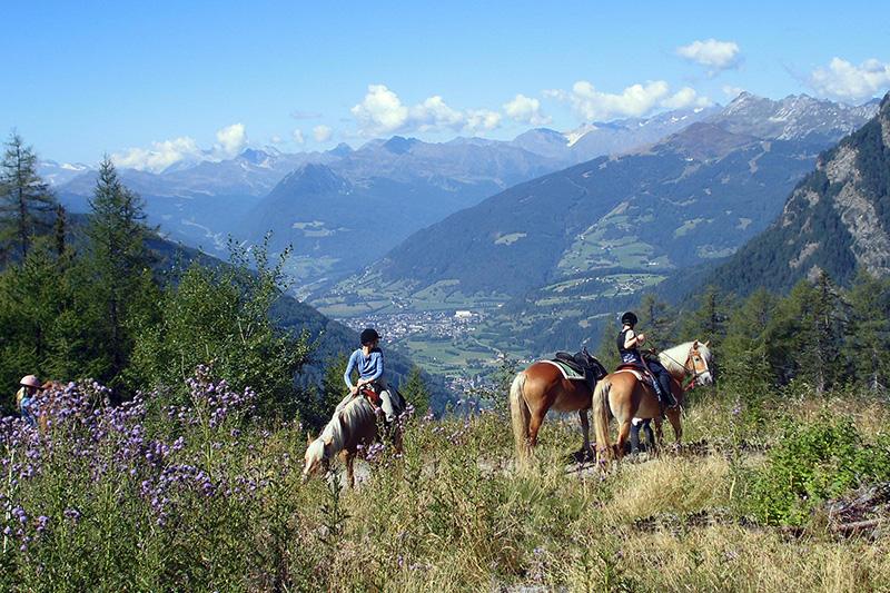 Reiten in Südtirol bei Sterzing