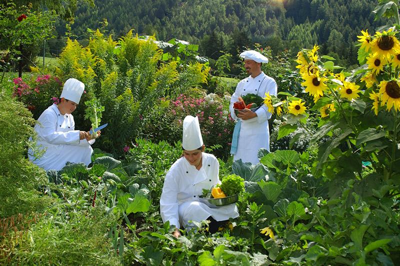 Leckere, gesunde, vitale mediterrane Menüs