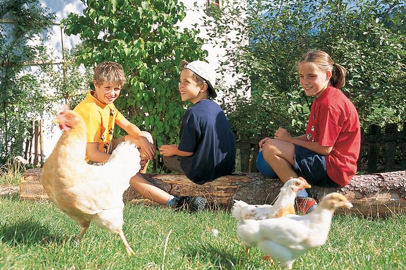 Urlaub auf dem Bauernhof in Ritten