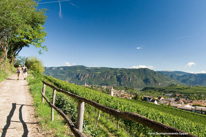 Genusswandern in Eppan in Südtirol