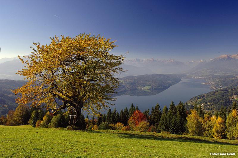 Schöne Herbstliche Stimmung