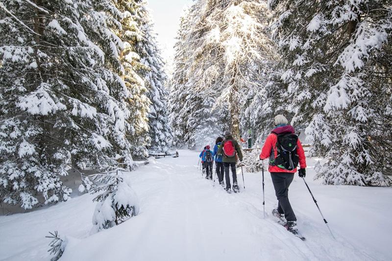 Schneeschuhwandern im Gschnitztal in Tirol