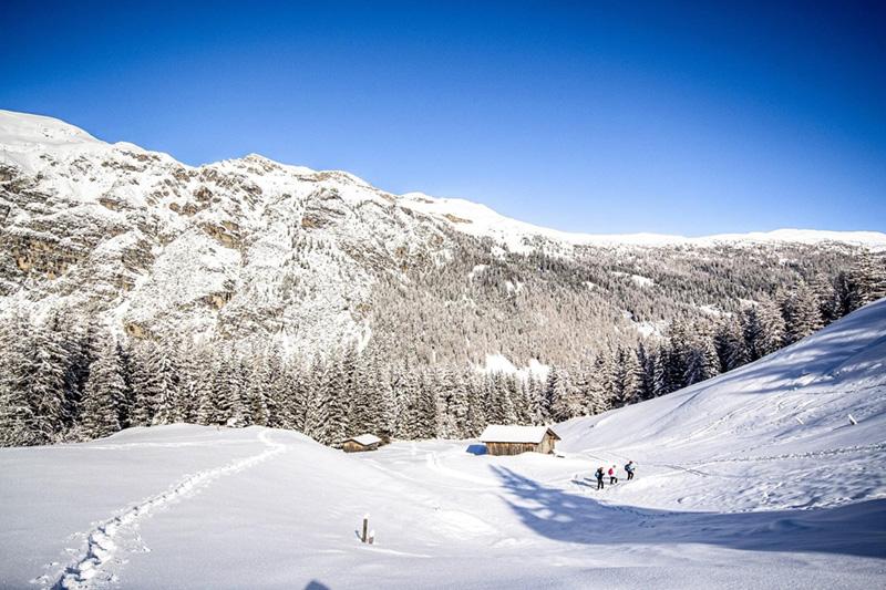 Schneeschuhwandern in der schönen Landschaft