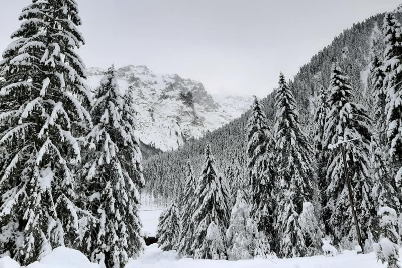 Alfaierhof-Winterlandschaft
