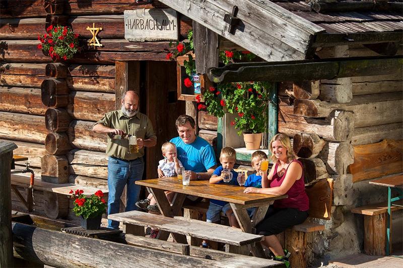 Alm in der Nähe der Weißbachschlucht - ideal für Familien