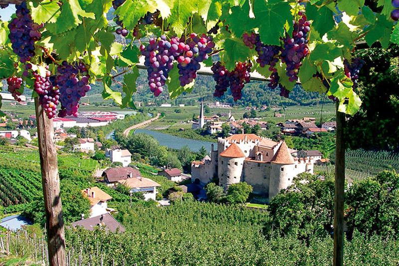 Herbsturlaub im Vinschgau
