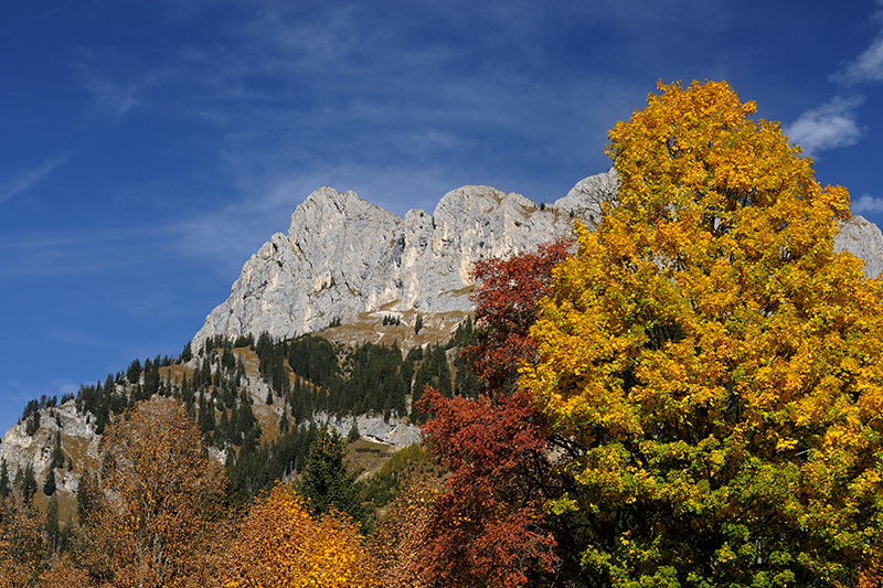 Herbsturlaub im Tannheimer Tal