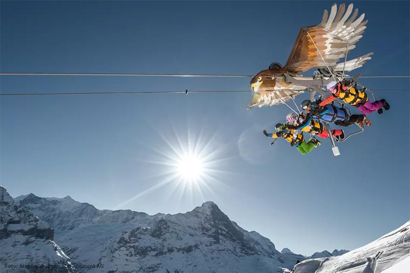 Mit einem Greifvogel fliegen in der Jungfrauregion