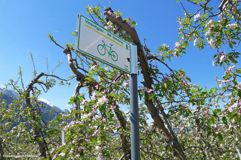 Laas liegt direkt an der bekannten Fahrradroute Via Claudia Augusta von Augsburg nach Venedig