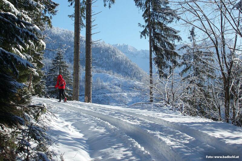Schneeschuhwandern in Bad Ischl und dem Salzkammergut