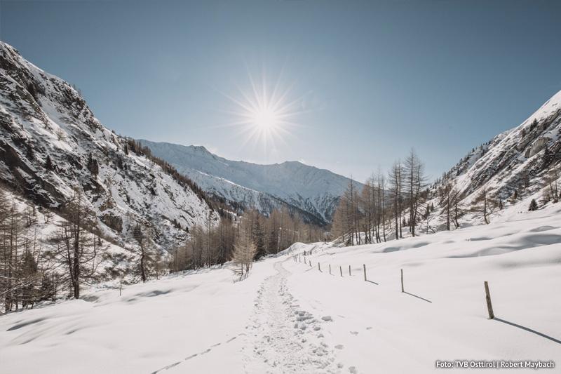 Goldried-Landschaft-Winter-Spaziergang