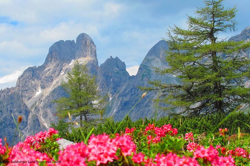 Urlaub im Sommer im Salzburger Land
