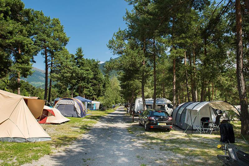 Campingurlaub auf dem Campingplatz Kiefernhain