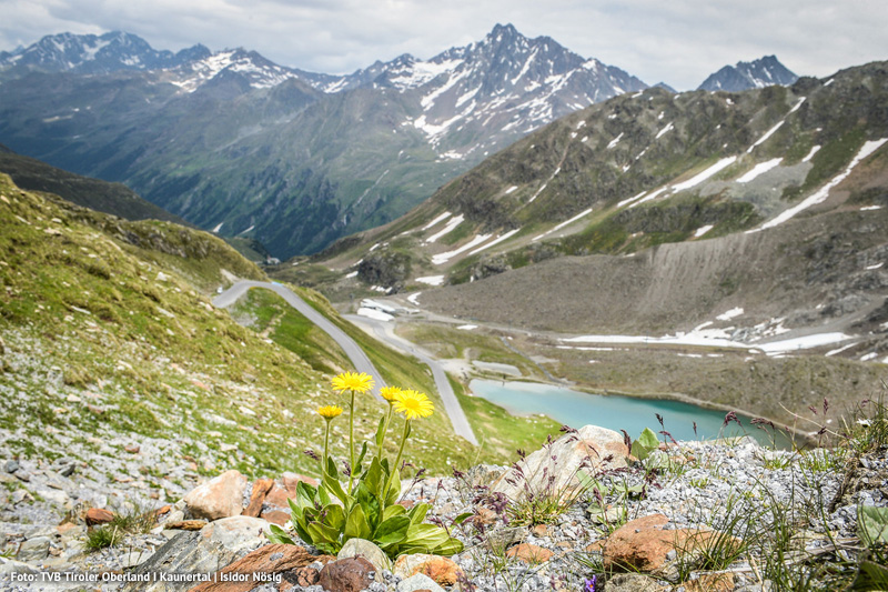 Laerchenhof-Gletscherkaiser