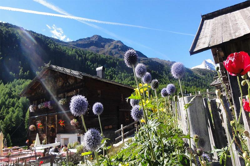 Von der Hüttenwanderung bis zur Gipfelbesteigung