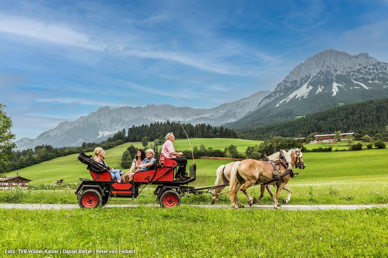 Tyrol-Soell-Pferdekutschfahrt