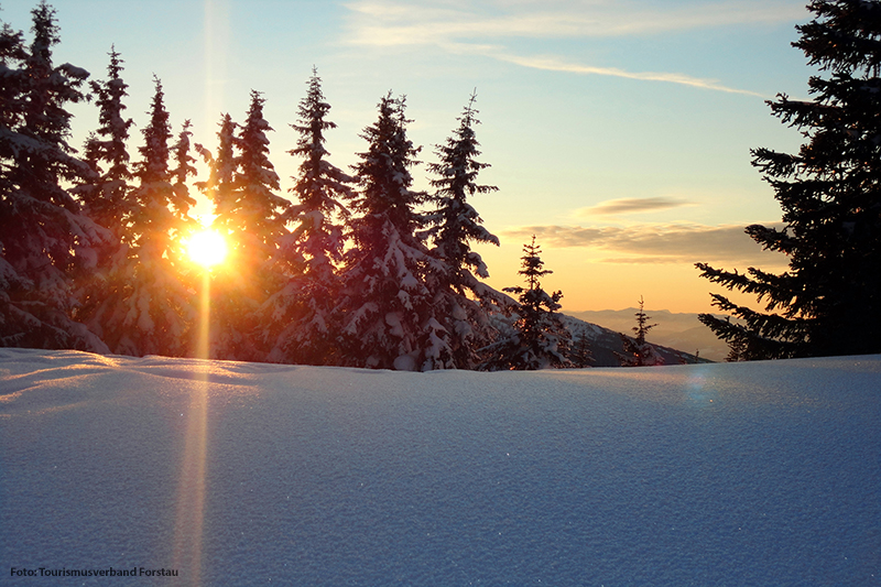 Sonnenuntergang im Winter in Forstau