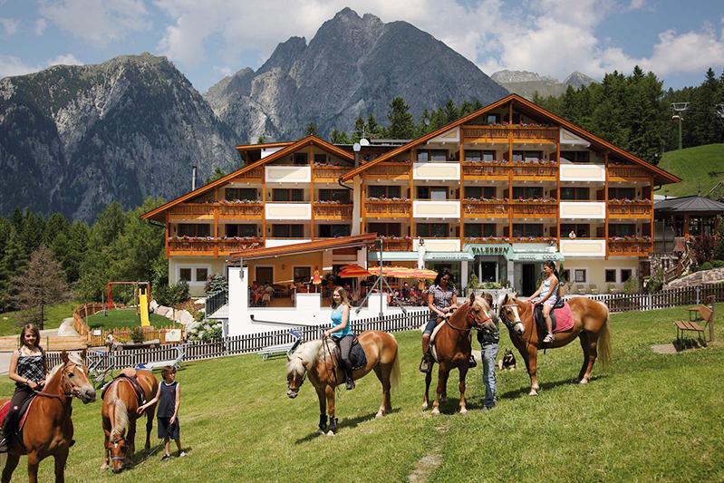 Hafling ist auch der Ort, aus dem der Haflinger stammt. Dieses ursprüngliche Gebirgspferd wird heute in erster Linie als robustes Freizeitpferd zum Reiten eingesetzt