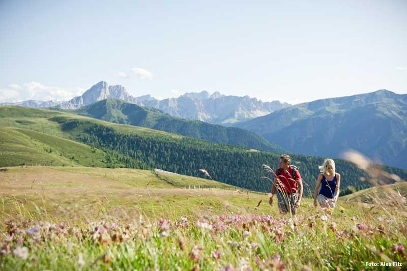 Erlebnisreicher Sommerurlaub in den Bergen