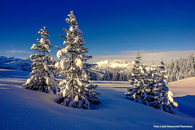 Wintertraum auf dem Bühlberg mit Blick auf das Wisstätthorn