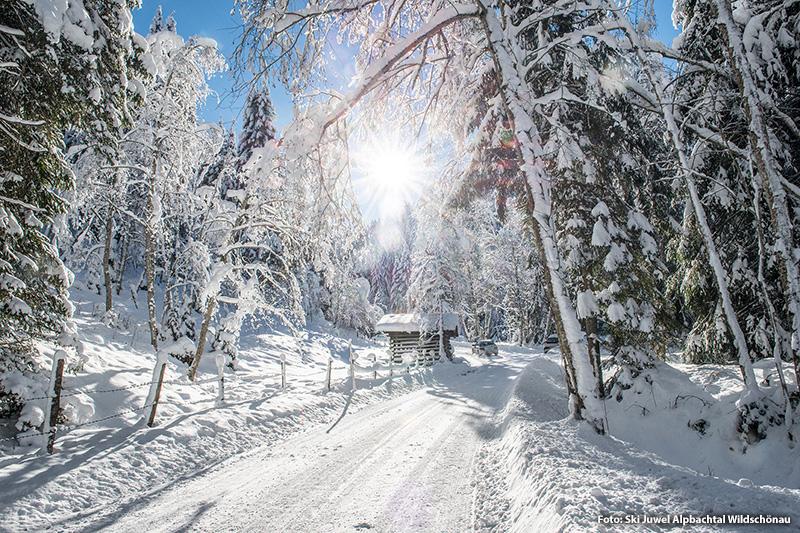 Winterwanderung zur Schönangeralm