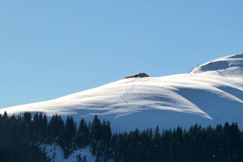 Tiefschneegebiet im Skigebiet St. Johann - Oberndorf in den Kitzbüheler Alpen in Österreich