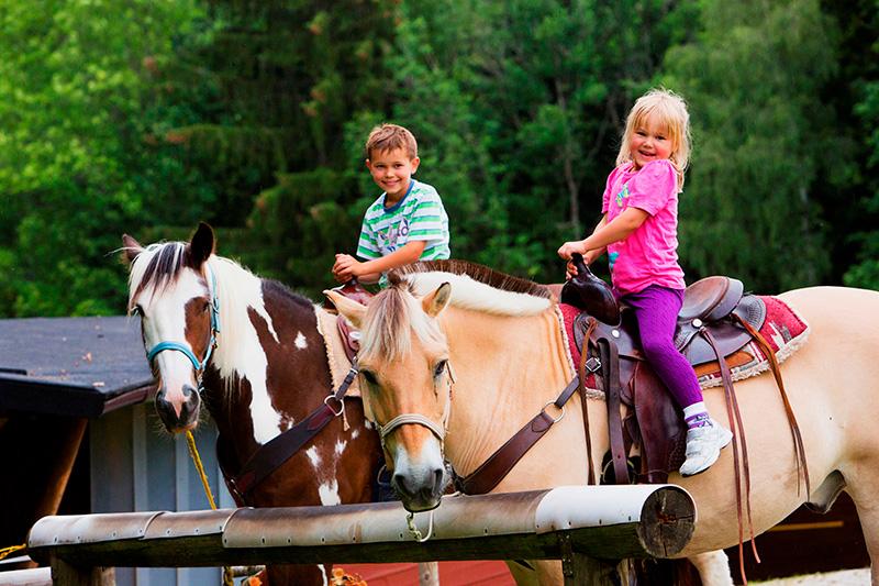 Ponyreiten und Kinderbetreuung