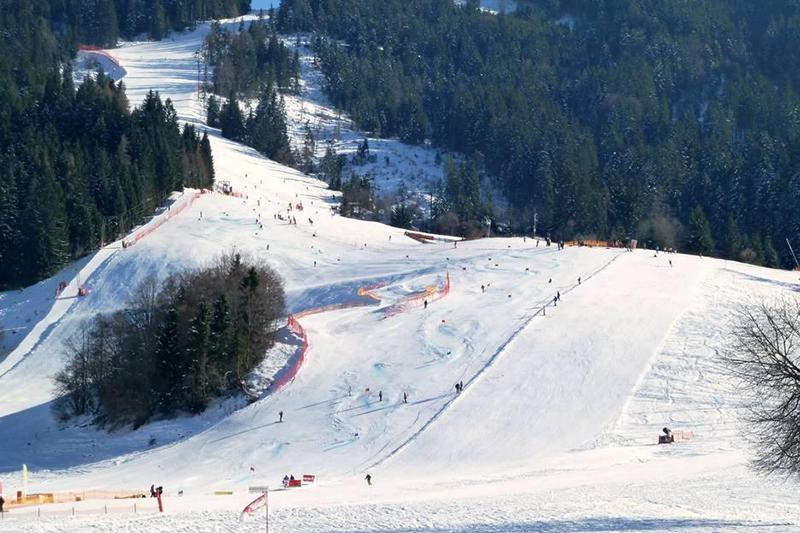 Race'n Boarder Arena Wildschönau