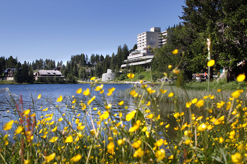 Sommerurlaub im Hotel Panorama Turracher Höhe