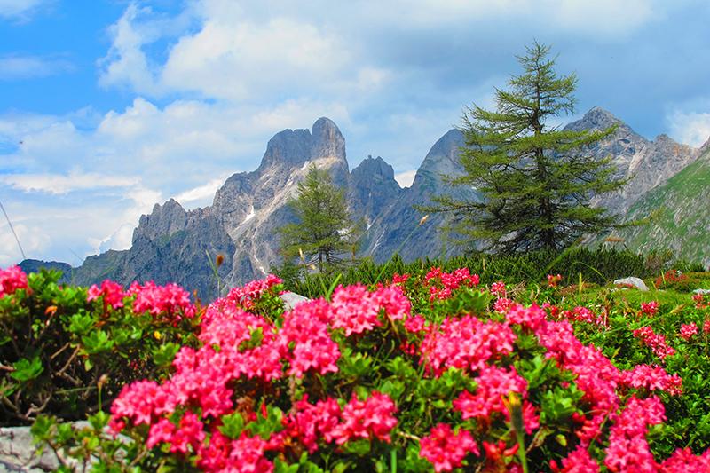 Filzmoos - ideal für ihren Wanderurlaub in Österreich