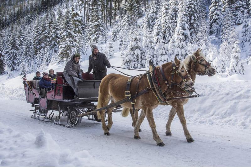Pferdeschlittenfahren in Filzmoos