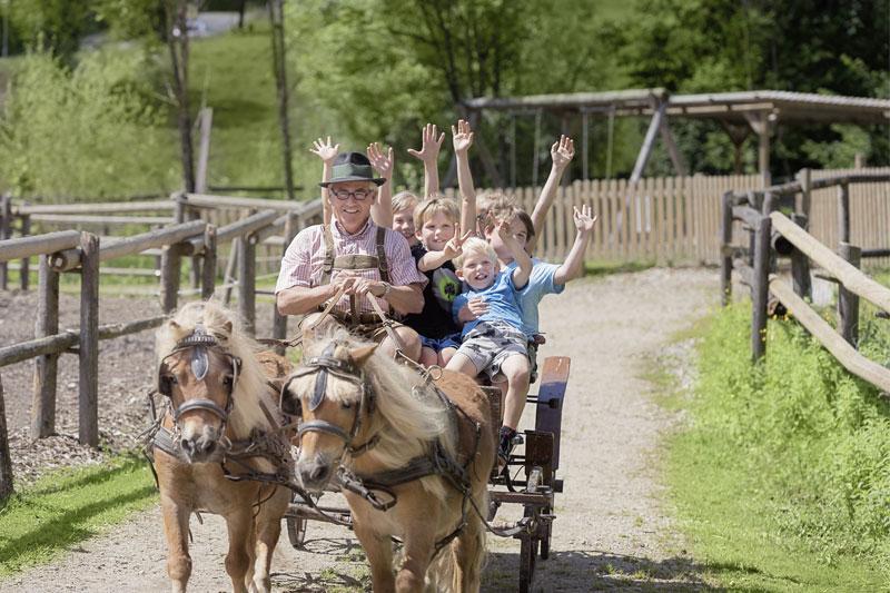 Ponykutsche für Kinder
