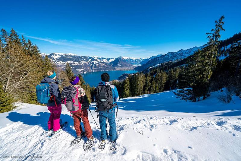 Schneeschuhtour durch das Wintermärchen Brienz