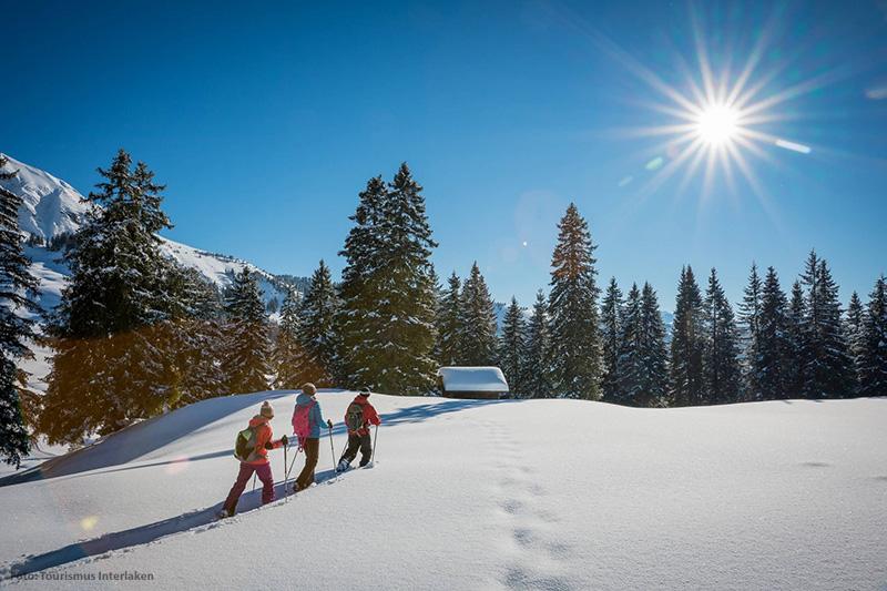 Schneeschuhwanderung in Brienz