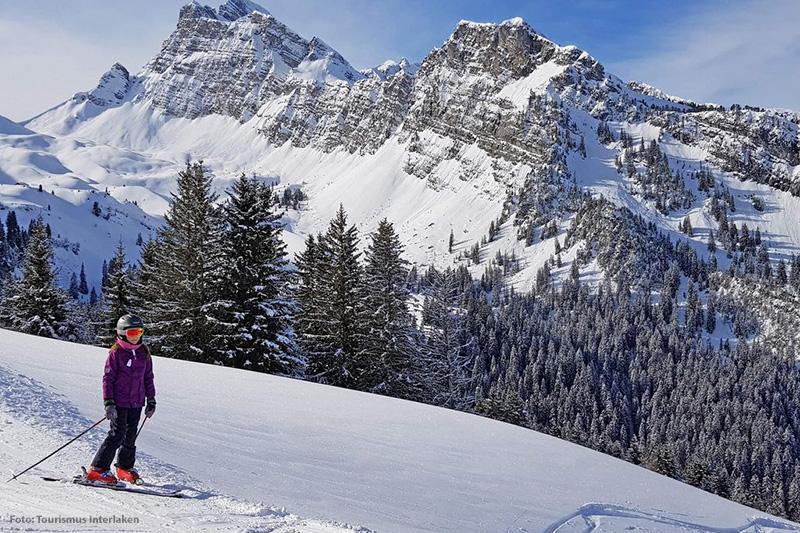 Skifahren in Brienz